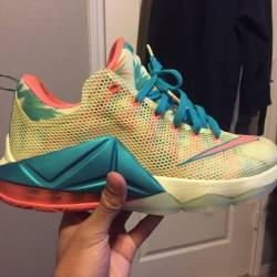 Lebronald palmers 12 lows