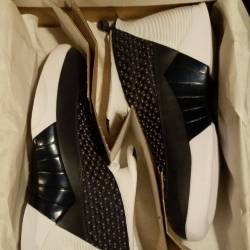 Air jordan 15 retro (sz 10)