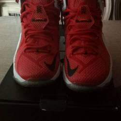 Nike lebron 12 heart of a lion