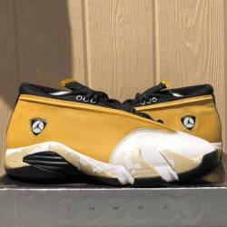 1999 jordan xiv 14 low ginger ...