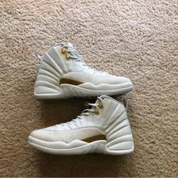 Air jordan 12 x ovo white