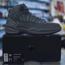 Jordan 12 psny gray