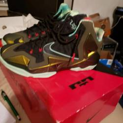 Lebron 11 kings pride size 9.5