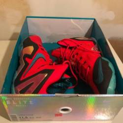 Nike lebron 11 elite - hero co...