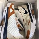Nike LeBron 16 Air Trainer
