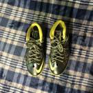"Lebron X 10 ""Dunkman"" GOOD CONDITION"