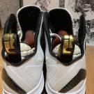 Nike LeBron 9 P.S Elite